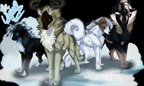 Dogs Of War    ~Salvos
