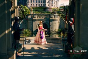 TZP: Hyrule Castle Garden