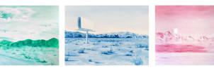oil painting photo studies