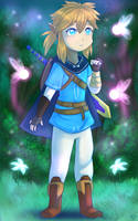 Breath of the Wild: Link by StarlightNexus-Chan