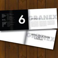 GRANEX - Brochure by ivankasaj