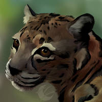 jungle cat *with speed paint* by Chrystal-Art