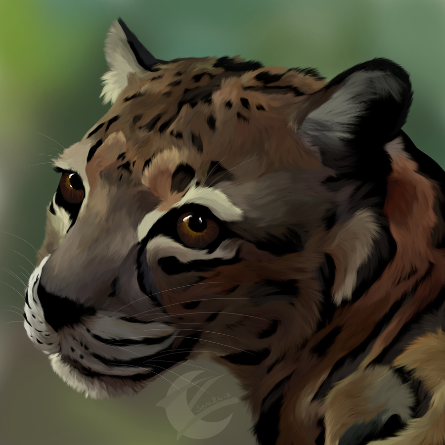 jungle cat *with speed paint* by ZannaArt