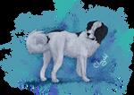 Happy Bithday Wolfy by Chrystal-Art