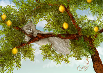 And all that I can see is just a yellow lemon tree by Chrystal-Art