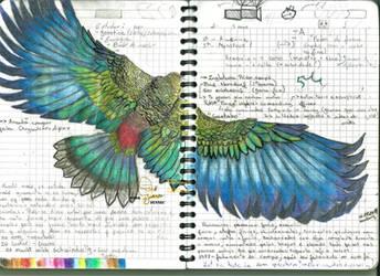 Eagle sketch #2