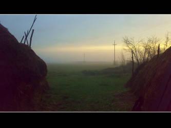morning by vladmacaru