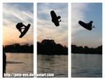 air by Pete-EOS
