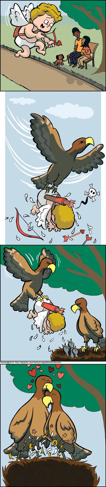 Love Birds by MontyRohde