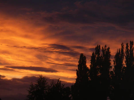 sky evening