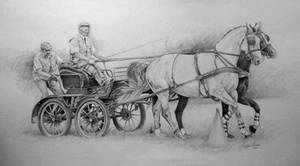 Carriage by Arabian-Alice