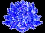 SMC Mercury Crystal with Lotus