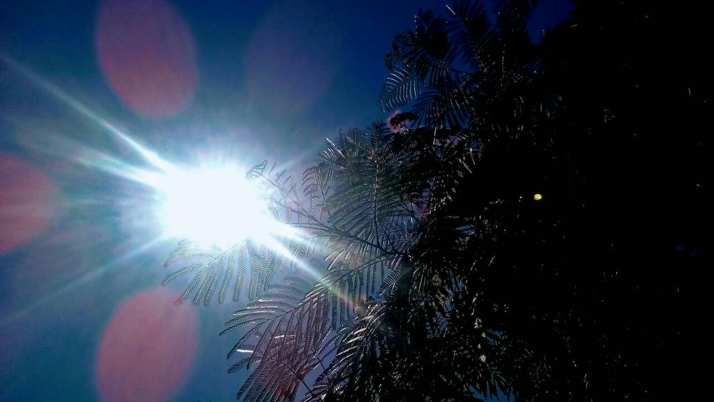 Sun by LK-2106