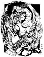 Black Falcon by jakebilbao