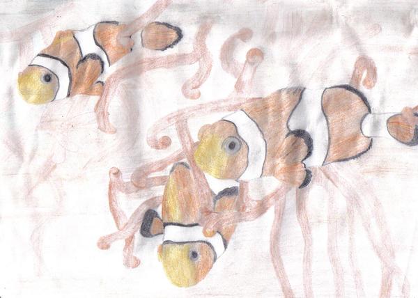 Nemo by agnese9