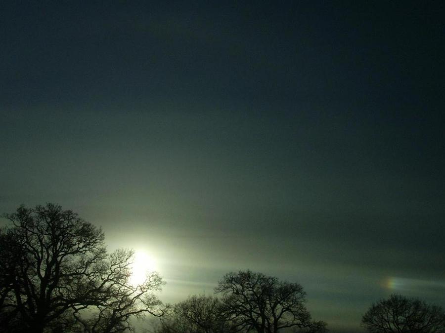 Rainbow by agnese9