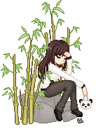 BAMBOO and PANDAS by veerle-chan