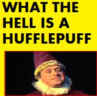 what the hell is a hufflepuff? by Chipmunki