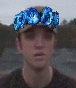 JaysWingWarriorWolf's Profile Picture