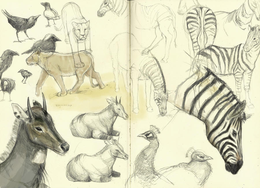 Zoo Sketches, Friday, May 7th by ToilettenMassaker
