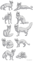 Cat linearts- 10 pack