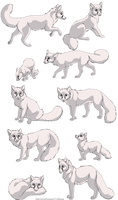 Fox linearts- 10 pack