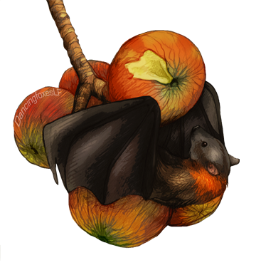 Fruit Bat by DancingfoxesLF