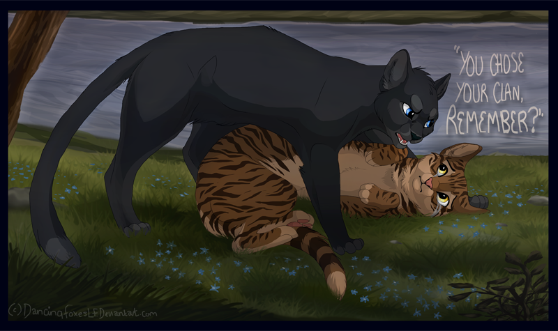 Warriors Cats Leafpool And Crowfeather