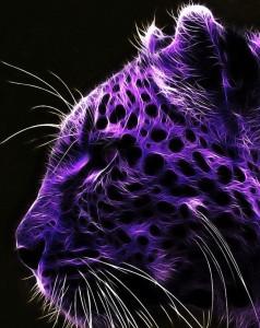 vipergirl02's Profile Picture