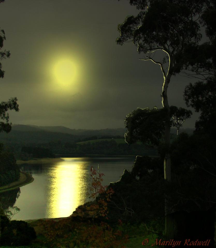 NIGHT DREAMS by TrueTaurean