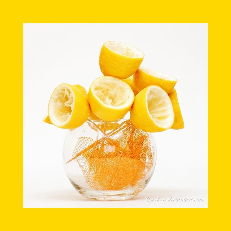 lemonade ikebana by a-b-n