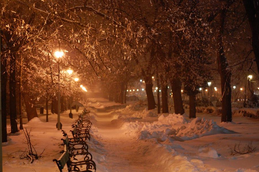 winter night by a-b-n