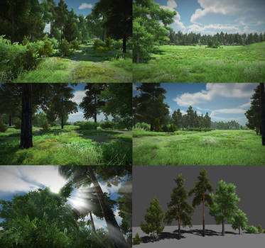 Forest assets for games