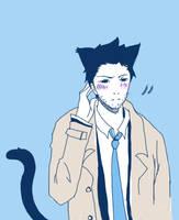 kitty cas~ by youyanwuzhu
