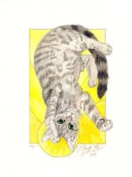 Logan Pet Portrait
