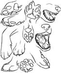Jaws and Paws Study