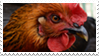 Chicken Stamp by Aliuh