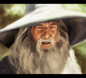 Gandalf by TrueInstinct