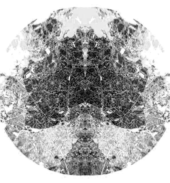Rock's butterfly by LoupeX2