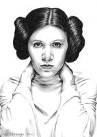 Princess Leia by SavanasArt