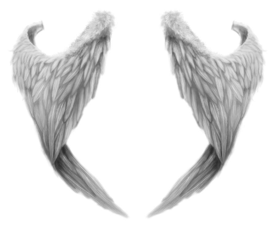 Realistic Angel Wings Png Wings 2 by romanticfae