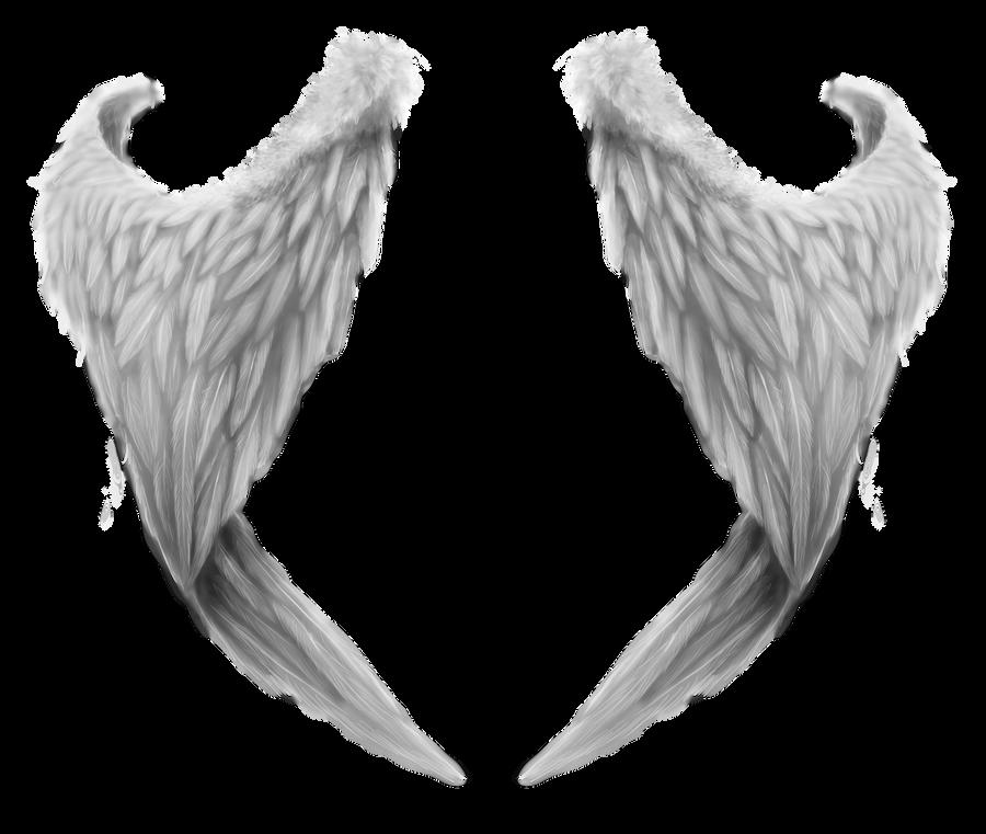wings 2 by RomanticFae