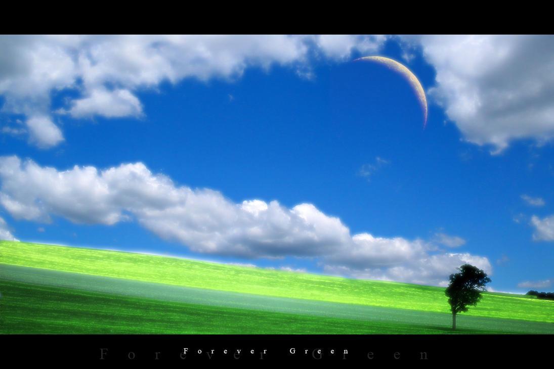 Forever Green by Frnak