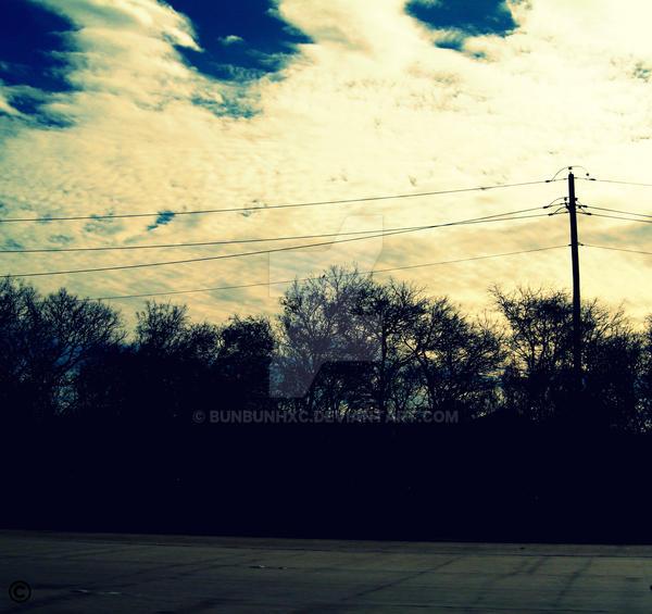 along the driveway by bunbunhxc