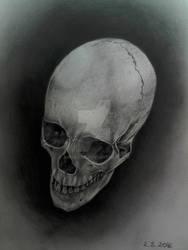Realistic SKULL in graphite #2