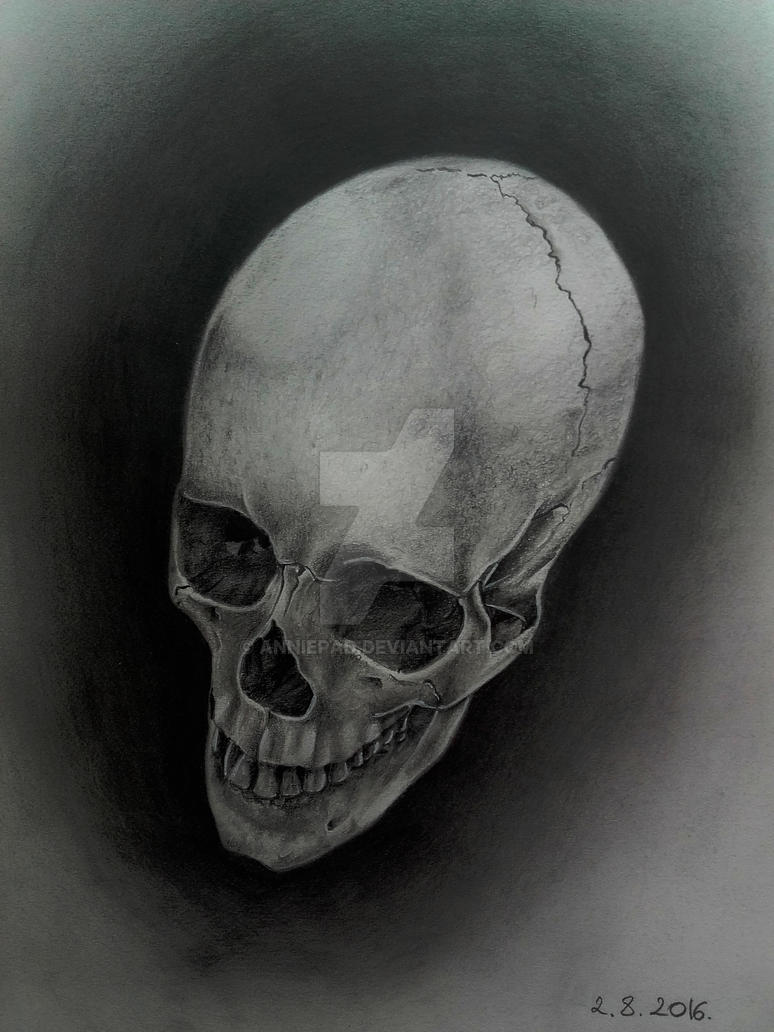 Realistic SKULL in graphite #2 by AnniePad