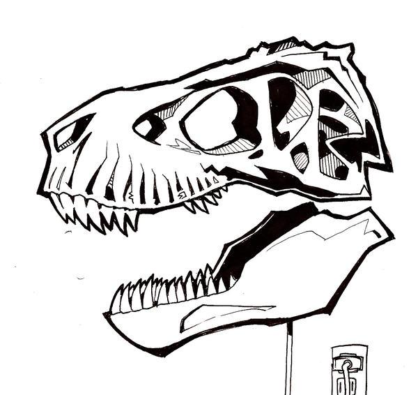 Trex Skull by MrOrozco on DeviantArt
