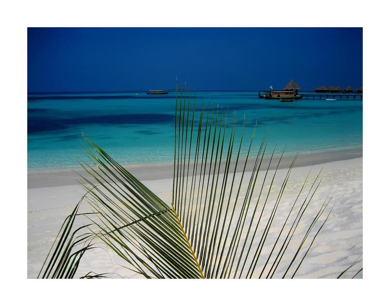 Maldives by Pecetta