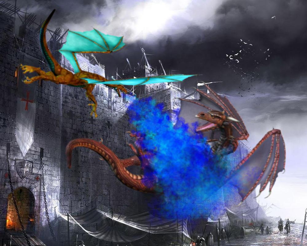 Dragonfight by sedsone