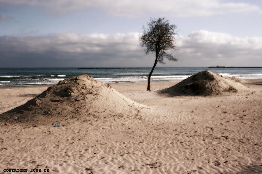 Dune by DanStefan